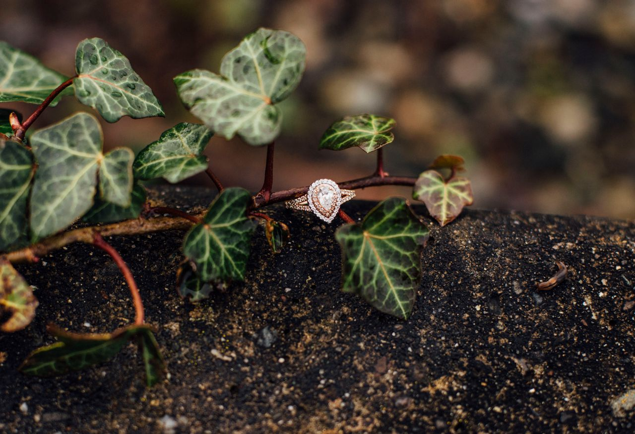 pretty ring shot in the vine